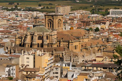 3,5 timers privat City Tour of Granada
