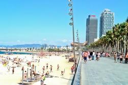 Visite privée d'une journée à Barcelone