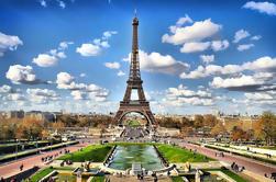 Llegada Privada Traslado desde el aeropuerto de París Orly al centro de la ciudad
