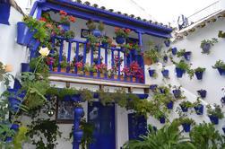 Tour del Festival de Patios de Córdoba