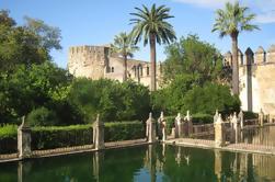 Excursión a pie de 3 horas por los monumentos de Córdoba