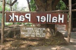 Excursión de un día a Haller Park y Mamba Village