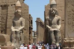 Crucero privado del Nilo 8 días 7 noches de viaje El Cairo Asuán Luxor incluido tren de noche