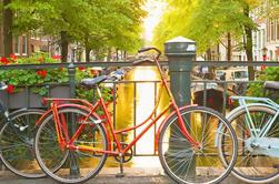 Excursão em grupo pequeno: Amsterdam City Centre Historical Walking Tour