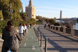 Sevilha Passeio de Bicicleta Seguindo o Rio Guadalquivir