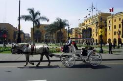 Private Lima City Tour com Larco Museum