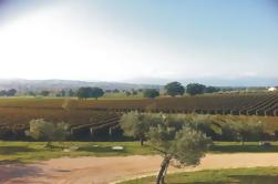 Private Tuscany Wine Tour Experiencia de Florencia