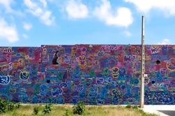 Barcelona Street Art Tour de Graffiti en bicicleta