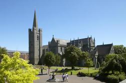Destacados de Dublín Tour Incluyendo Skip-the-Line Visita de la Catedral de San Patricio