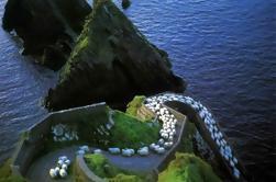 Excursión de un día a Dingle and Inch Beach desde Killarney