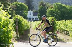 Tour de ciclismo privado de Constantia Winelands