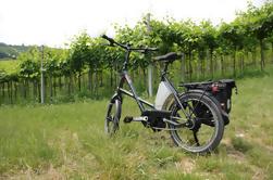 E-bike Tour y degustación de vinos