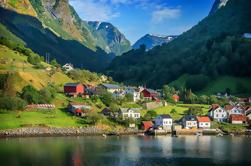 Excursión privada a Sognefjord, Gudvangen y Flåm desde Bergen