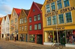 Excursión privada a la costa: Bergen en coche