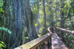 Cinco Ceibas Excursión de día completo desde San José