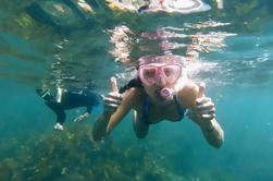Manly Snorkeling Tour e passeio pela natureza