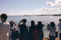 Manly e North Head passeio guiado costeira