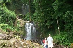 Tour de Baño de Lodo en Cascada y Agua Caliente en Rincón de la Vieja