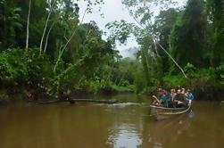 9 días o 11 días en Guyana Burro Burro River Trip