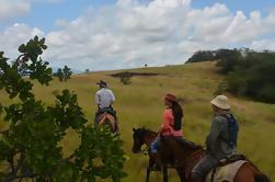 7 días de Aventura en el Rancho Salvaje de Guyana