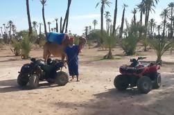 Circuito de Quad y Excursión en Camello