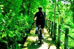 Excursão de bicicleta da selva de Banguecoque
