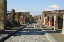 Viaje de un día desde Roma a Nápoles y Pompeya - Tour privado