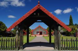 Excursión de día completo a Rotorua incluyendo Te Puia y Hells Gate Thermal Beds