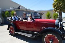 Experiencia privada de auto-manejo de automóviles de día completo en Napier