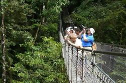 Puentes colgantes Arenal y fuentes termales de lujo