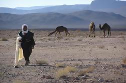 Excursión privada de 2 noches al desierto de arena de Erg Chegaga