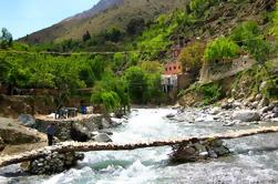 Excursión de un día al valle de Ourika con una caminata corta y una experiencia bereber de Marrakech