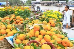Excursão privada do Delta do Mekong de um dia inteiro em lancha rápida