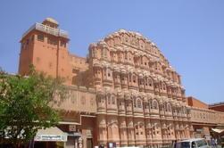Jaipur Pink City Tour de día completo incluyendo almuerzo y paseo en camello