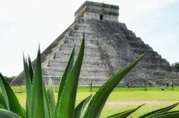 Ruinas Privadas Coba y Chichén Itzá con Almuerzo y Cenote Ik Kil Nadar desde Tulum