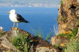 Día Tour al Lago Sevan, Tsakhkadzor Rope Way y Monasterio Kecharis en Armenia