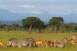 Safari de 3 días en el Parque Nacional Mikumi