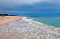 Parque Nacional Yanchep, Excursión de un día a Pinnacles y Scarborough Beach desde Perth