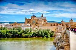Alcazar, Mosque of Cordoba, Jewish Quarter and Synagogue: Guided Day Tour from Seville