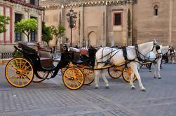 Visite guidée à Séville