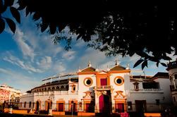 Sevilla Sightseeing, River Cruise, Bullring og Basilica Macarena Guided Tour