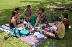 Excursión en bicicleta y picnic en Madrid