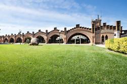 Excursión privada Montserrat y Penedes desde Barcelona