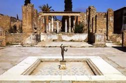 Excursión de medio día a las Ruinas de Pompeya