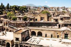 Excursión privada de media jornada Herculaneum Ruins