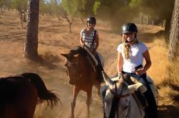 Excursión a caballo desde Sevilla