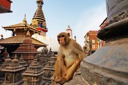 Visite privée de Katmandou